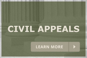 Civil Appeals Attorney in Gainesville, Florida Family And Business Law Office